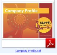 Murri's on the Move Driving School Ltd png image of Company-Profile based on the Sunshine Coast